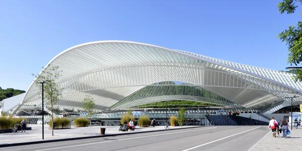 The Guillemins Station